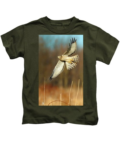 Kids T-Shirt featuring the photograph Northern Harrier Banking by William Jobes