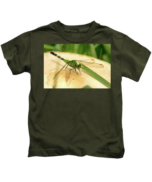 Odonate On Mushroom With Grass Blade Kids T-Shirt