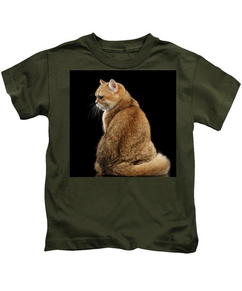 offended British cat Golden color Kids T-Shirt