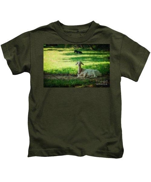 Peaceful Pasture Kids T-Shirt