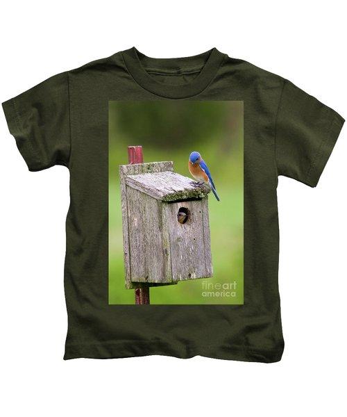 Peek A Boo Blue Kids T-Shirt