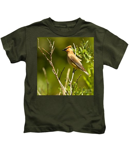 Perfectly Perched Kids T-Shirt by Adam Jewell