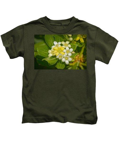 Pittosporum Flowers Kids T-Shirt