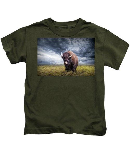 Plains Buffalo On The Prairie Kids T-Shirt