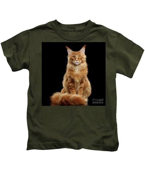 Portrait Of Ginger Maine Coon Cat Isolated On Black Background Kids T-Shirt