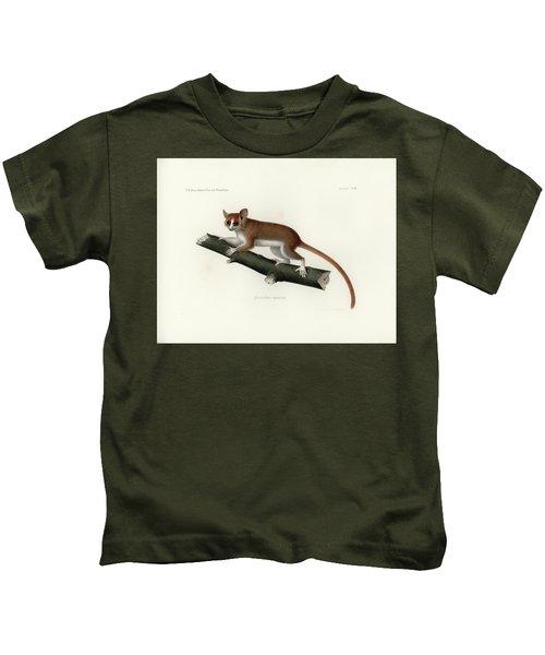 Pygmy Mouse Lemur Kids T-Shirt