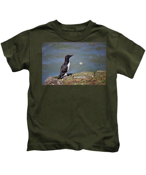 Razorbill Kids T-Shirt by Vicki Field