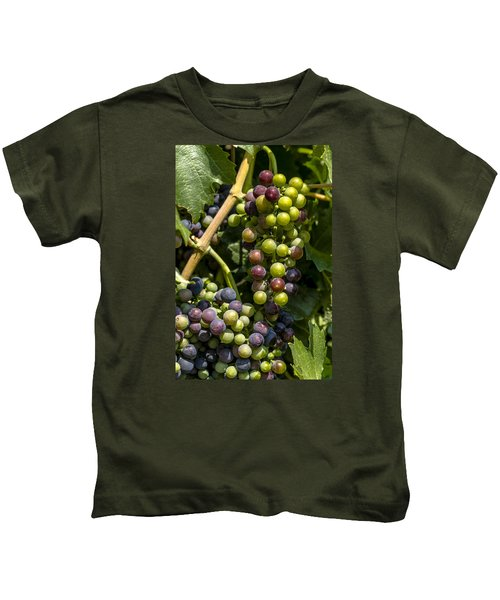 Red Wine Grape Colors In The Sun Kids T-Shirt