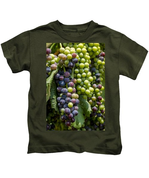 Red Wine Grapes In The Vineyard Kids T-Shirt