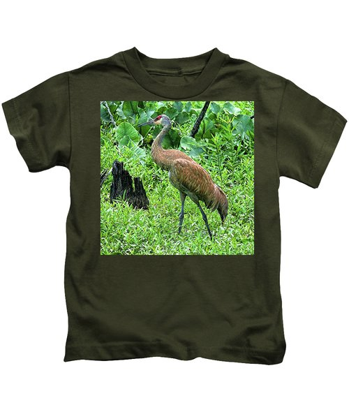 Sandhill Crane At Sandy Ridge Reservation Kids T-Shirt