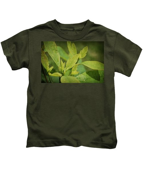 Sassafras Tree Kids T-Shirt
