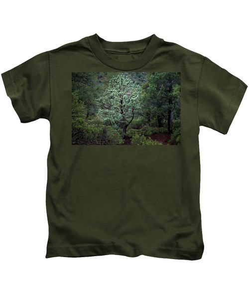 Sedona Tree #1 Kids T-Shirt