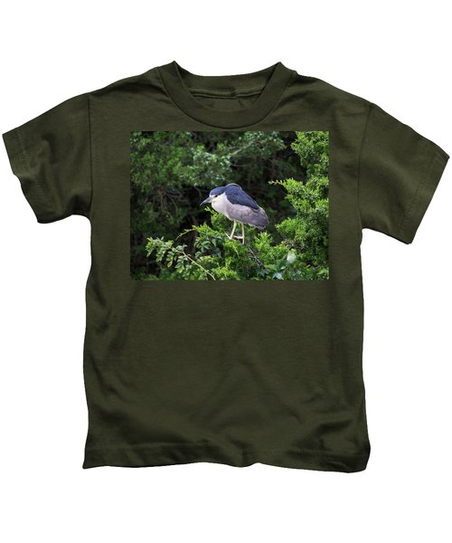 Shore Bird Roosting In A Tree Kids T-Shirt