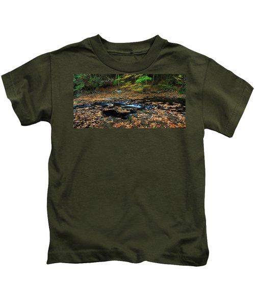 Silky New England Stream In Autum Kids T-Shirt