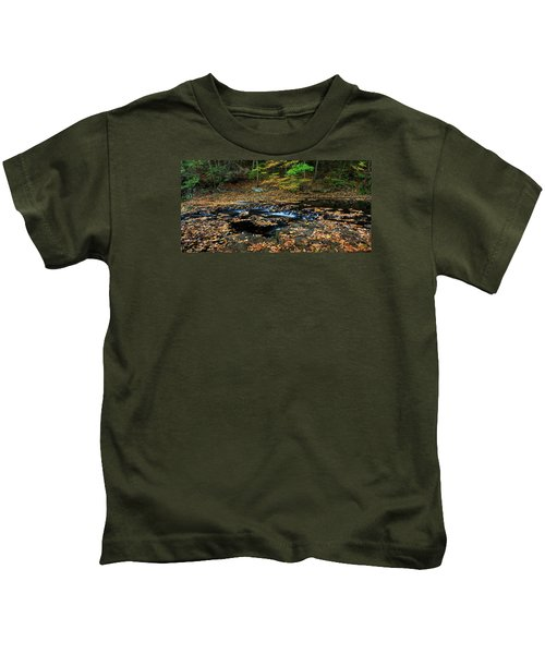 Silky New England Stream In Autum Kids T-Shirt