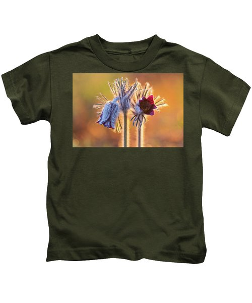 Small Pasque Flower, Pulsatilla Pratensis Nigricans Kids T-Shirt