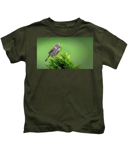 Song Sparrow Perched - Melospiza Melodia Kids T-Shirt
