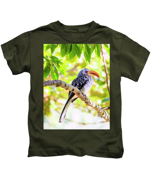 Southern Yellow Billed Hornbill Kids T-Shirt by Alexey Stiop