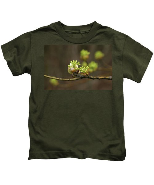 Spring Buds 9365 H_2 Kids T-Shirt