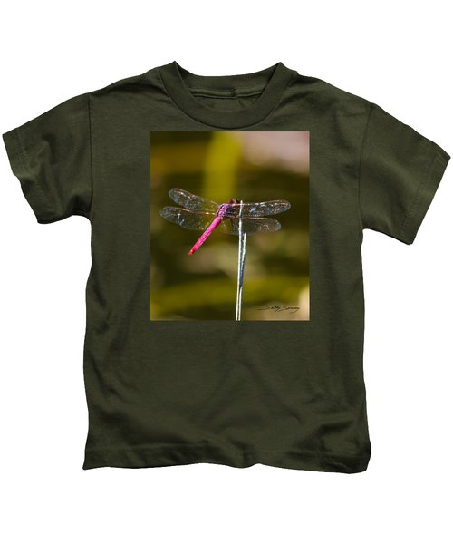 Stained Glass Wings Kids T-Shirt