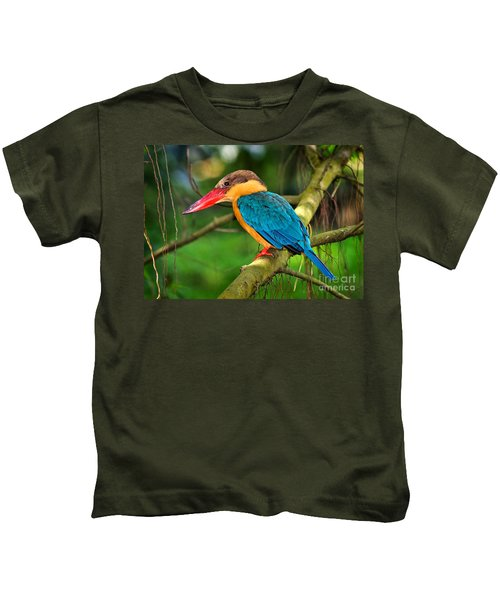 Stork-billed Kingfisher Kids T-Shirt by Louise Heusinkveld