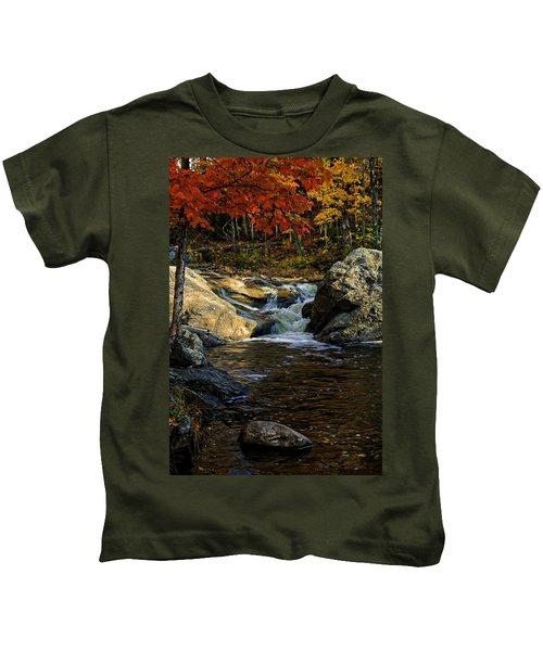 Stream In Autumn No.17 Kids T-Shirt