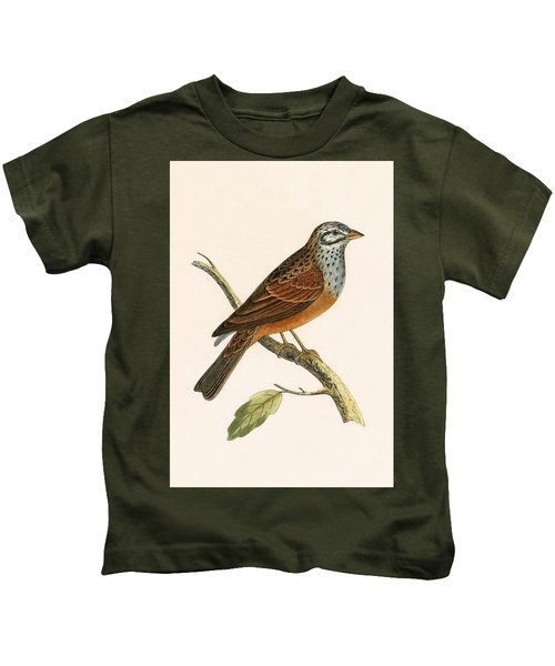 Striolated Bunting Kids T-Shirt by English School