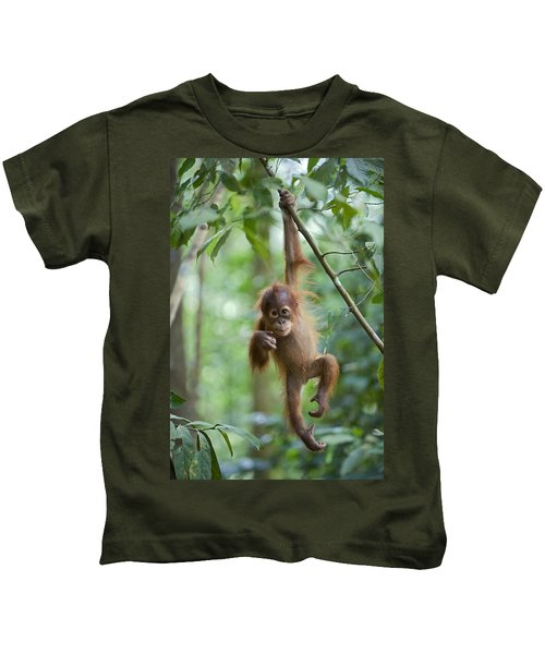 Sumatran Orangutan Pongo Abelii One Kids T-Shirt by Suzi Eszterhas