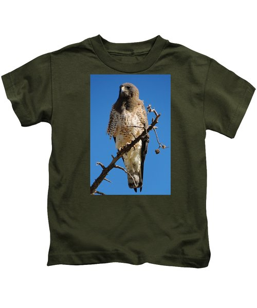 Swainson's Hawk Kids T-Shirt