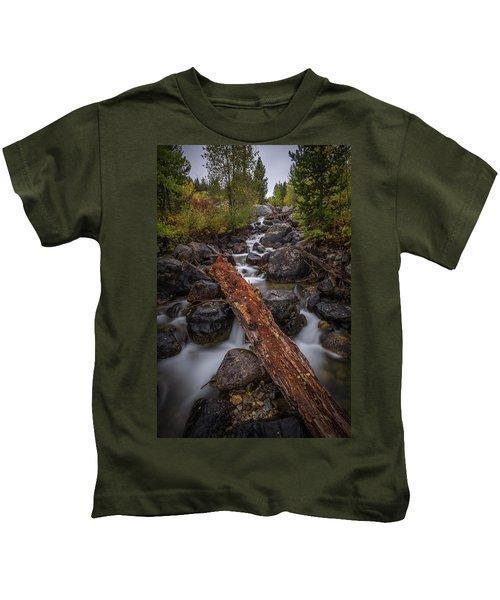 Taggert Creek Waterfall Log Kids T-Shirt