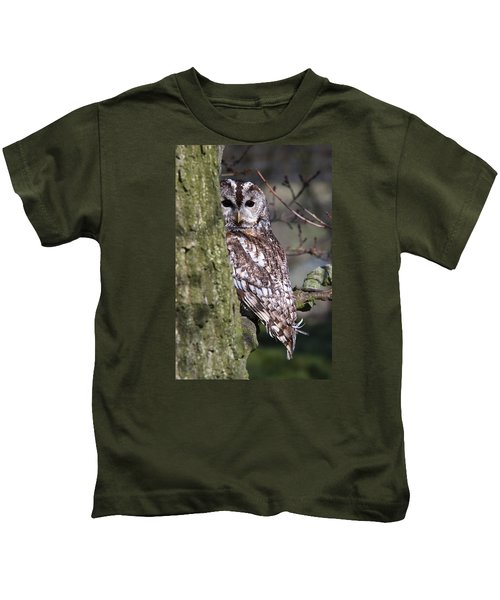 Tawny Owl In A Woodland Kids T-Shirt