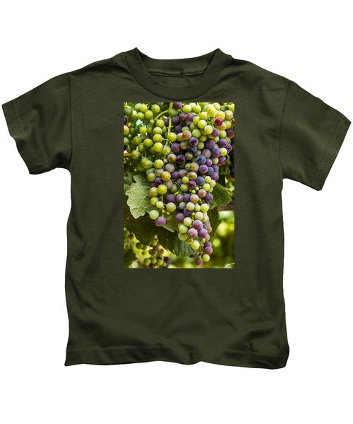 The Art Of Wine Grapes Kids T-Shirt