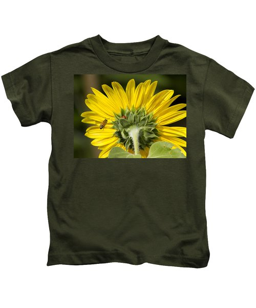 The Bee Lady Bug And Sunflower Kids T-Shirt