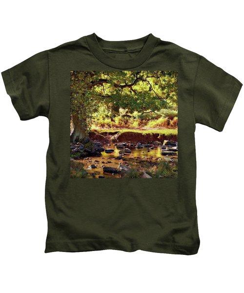 The River Lin , Bradgate Park Kids T-Shirt