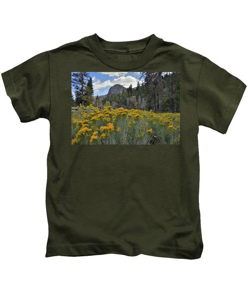 The Road To Mt. Charleston Natural Area Kids T-Shirt