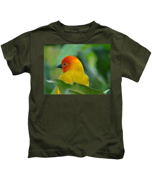 Through A Child's Eyes - Close Up Yellow And Orange Bird 2 Kids T-Shirt by Exploramum Exploramum