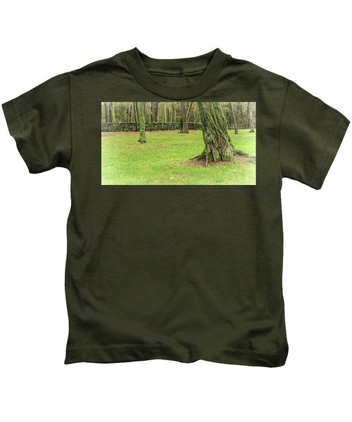 Venerable Trees And A Stone Wall Kids T-Shirt
