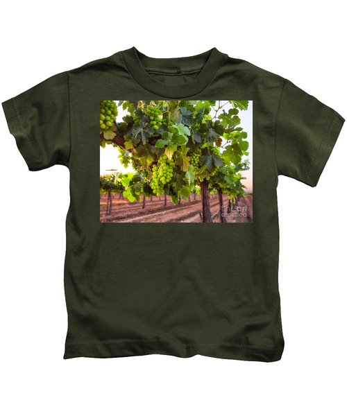 Vineyard 3 Kids T-Shirt