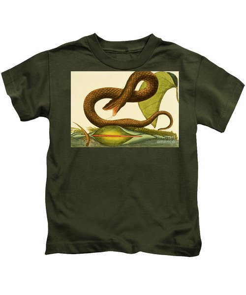 Viper Fusca Kids T-Shirt by Mark Catesby