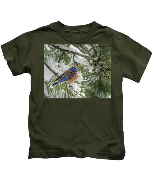 Western Bluebird In A Snowy Pine Kids T-Shirt