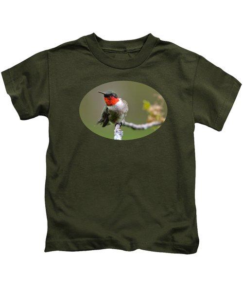 Wild Birds - Ruby-throated Hummingbird Kids T-Shirt by Christina Rollo