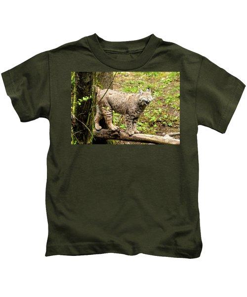 Wild Bobcat In Mountain Setting Kids T-Shirt