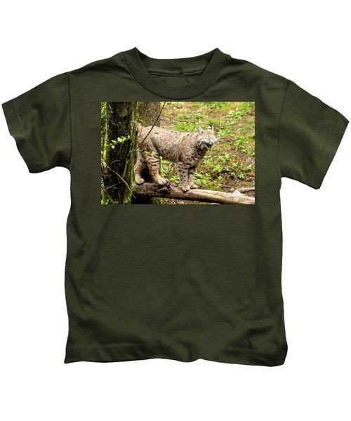 Wild Bobcat In Mountain Setting Kids T-Shirt