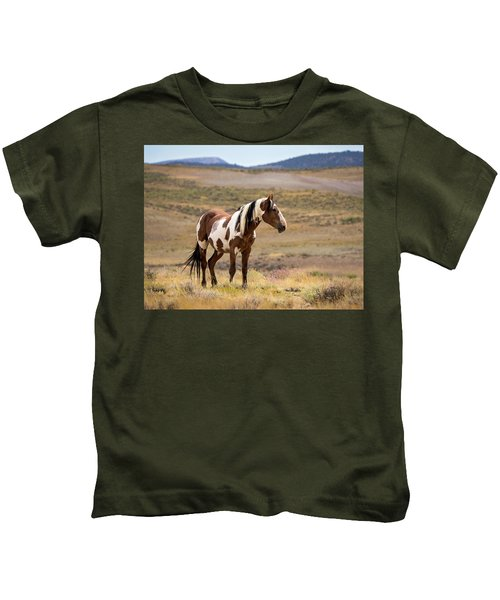 Wild Mustang Stallion Picasso Of Sand Wash Basin Kids T-Shirt