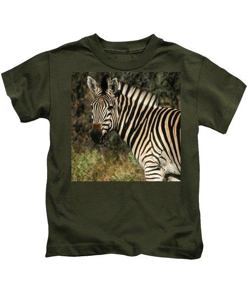 Zebra Watching Sq Kids T-Shirt