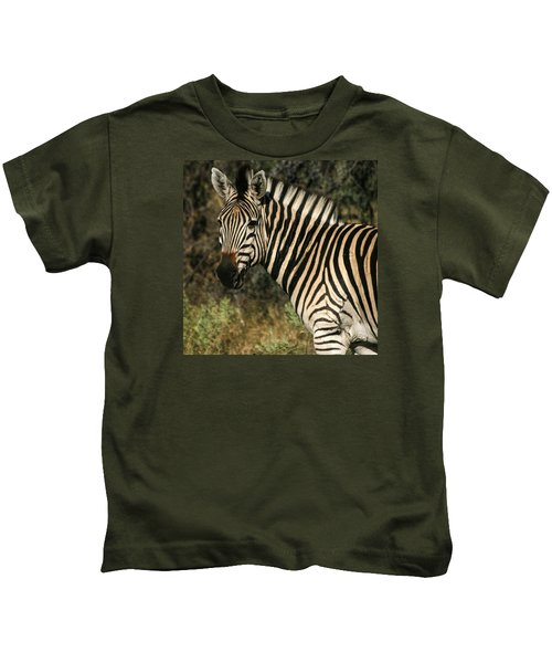Zebra Watching Sq Kids T-Shirt
