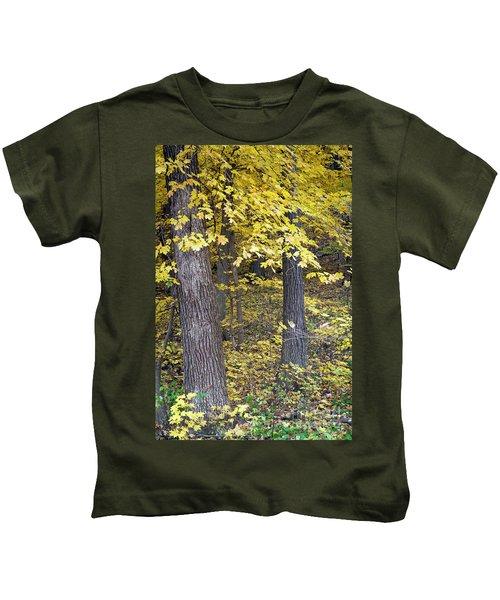 1507 Autumn At Starved Rock Kids T-Shirt