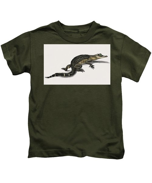 Alligator  Alligator Incius Illustrated By Charles Dessalines D' Orbigny  1806-1876  Kids T-Shirt