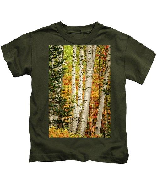 Autumn Birch Kids T-Shirt