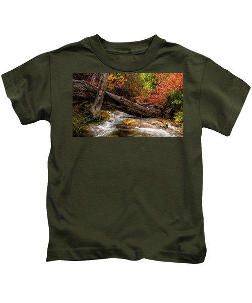 Autumn Dogwoods Kids T-Shirt